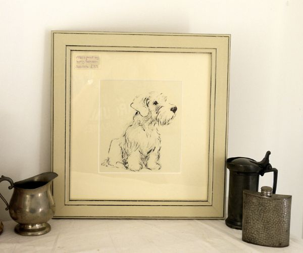 Large Sealyham - sitting 1930's print by Lucy Dawson- Sea D16